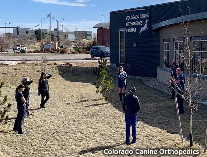 Colorado Canine Orthopedics CO 3