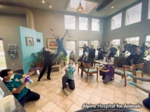 Alpine Hospital for Animals CO